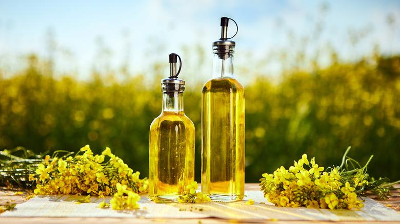 canola oil in bottles