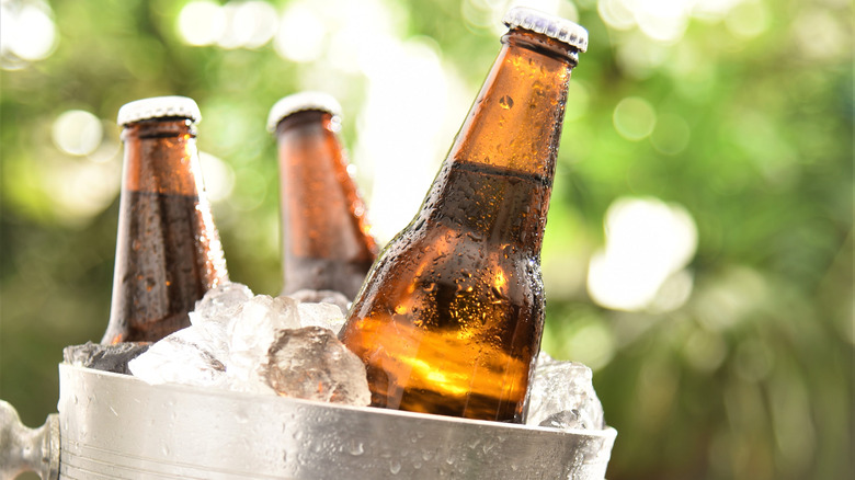 Bottles in bucket of ice