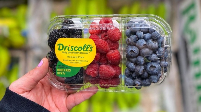 Hand holding Aldi's new pack of berries