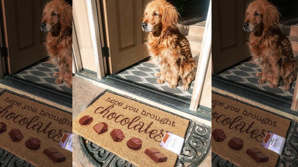 Dog guarding Valentine's door mat