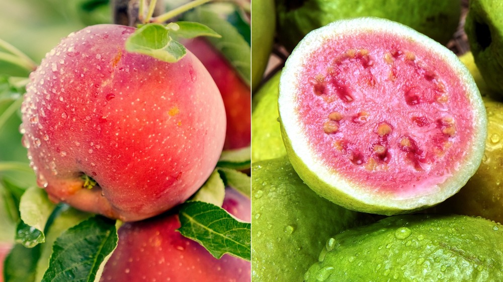 Apples and guavas