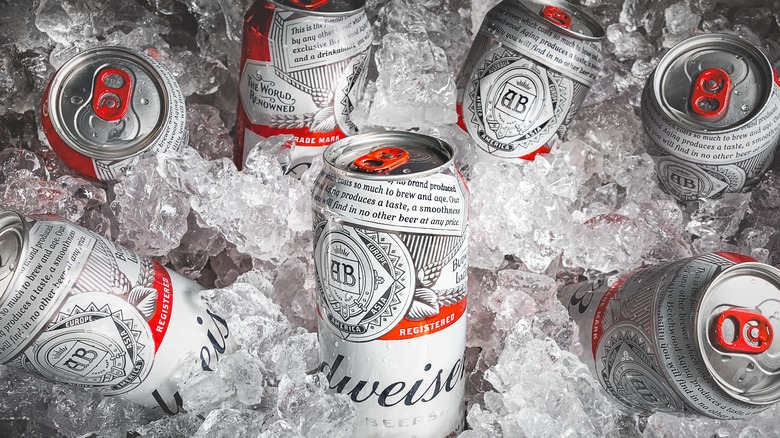 Budweiser cans in ice