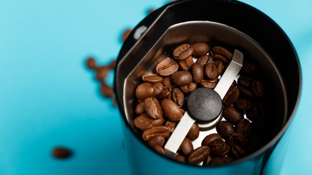 electric blade coffee grinder against a blue background
