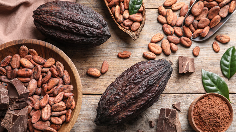 Cacao pods, beans, and chocolate on wooden surface