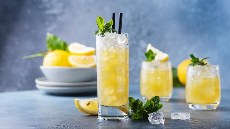 variety of vodka soda types