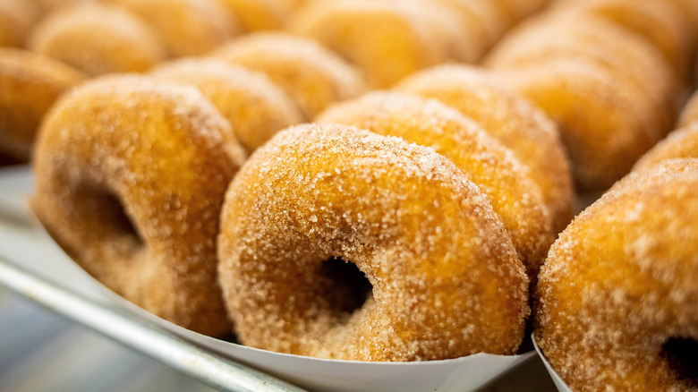 Row of apple cider donuts
