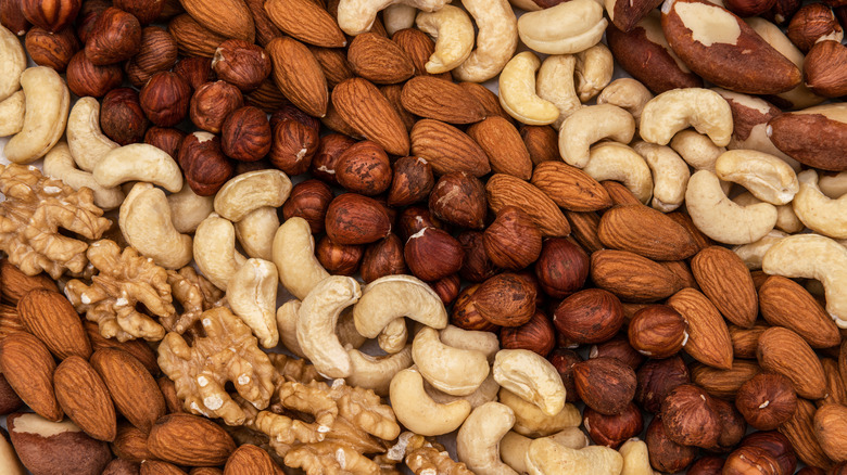 Assorted nuts arranged in rows