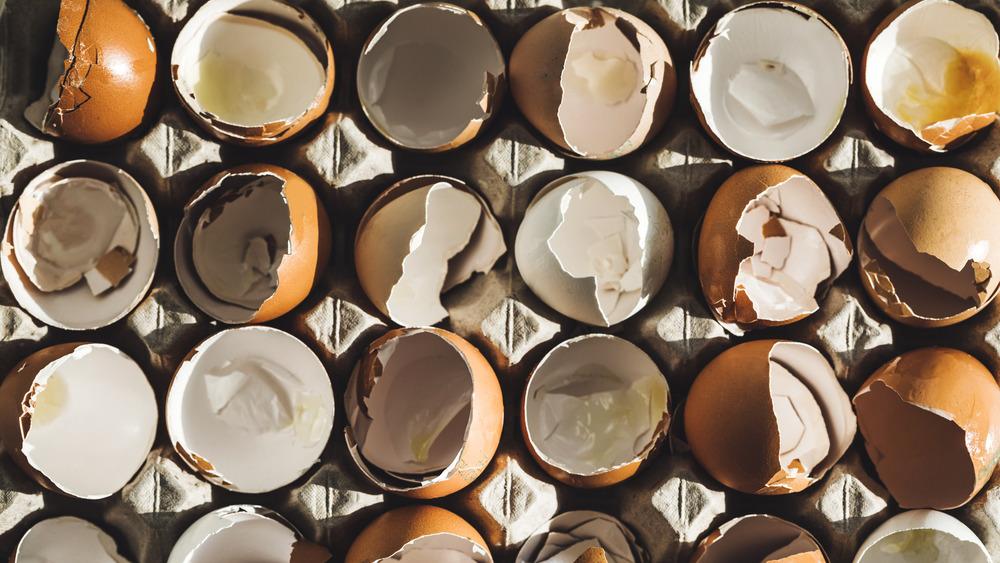 Carton of broken eggshells