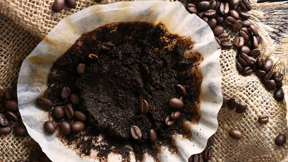 Coffee filter with grounds and whole beans