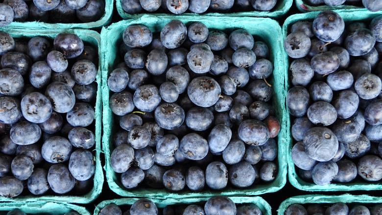 Fresh blueberries in green pint baskets