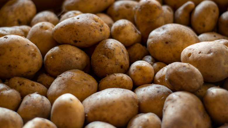 A pile of brown russet potatoes