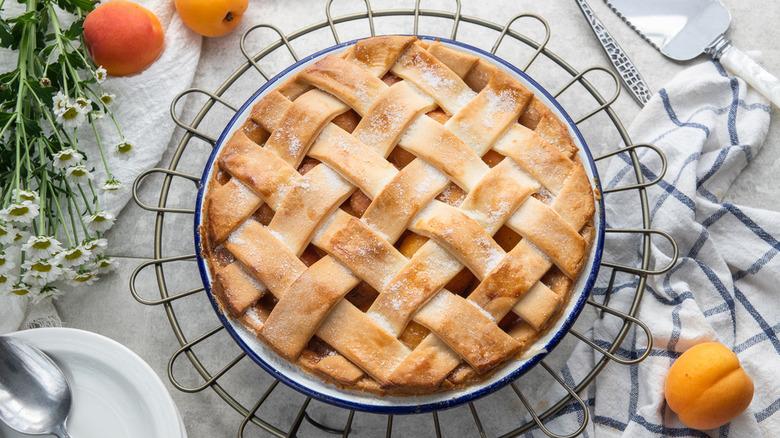 apricot pie with lattice top