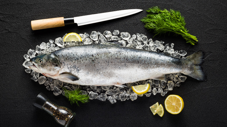 Fish on ice with a knife