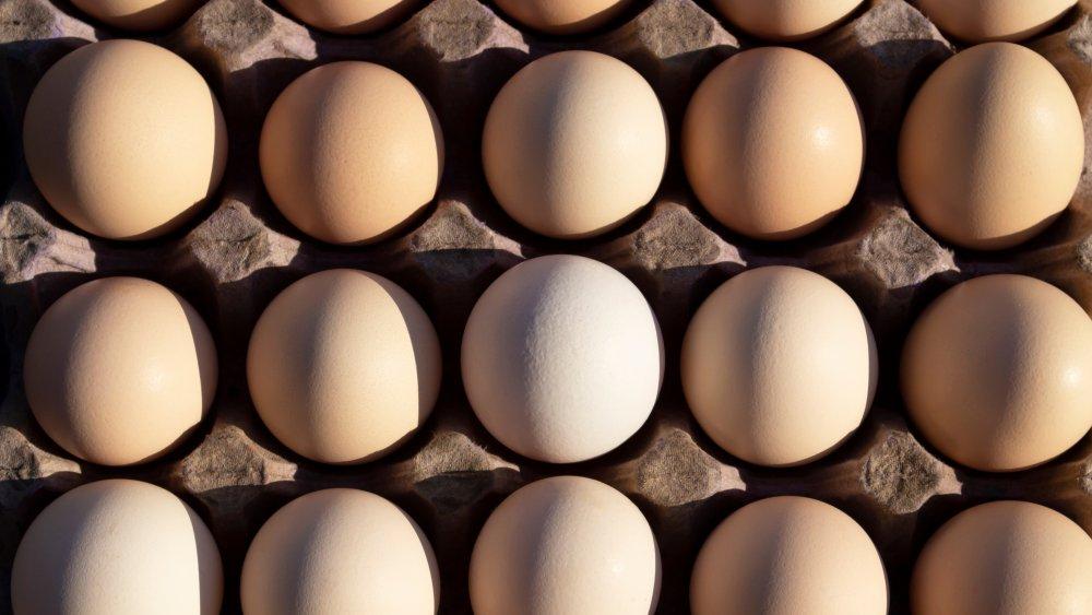 A carton of eggs