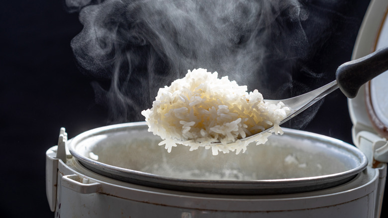 A spoon of rice
