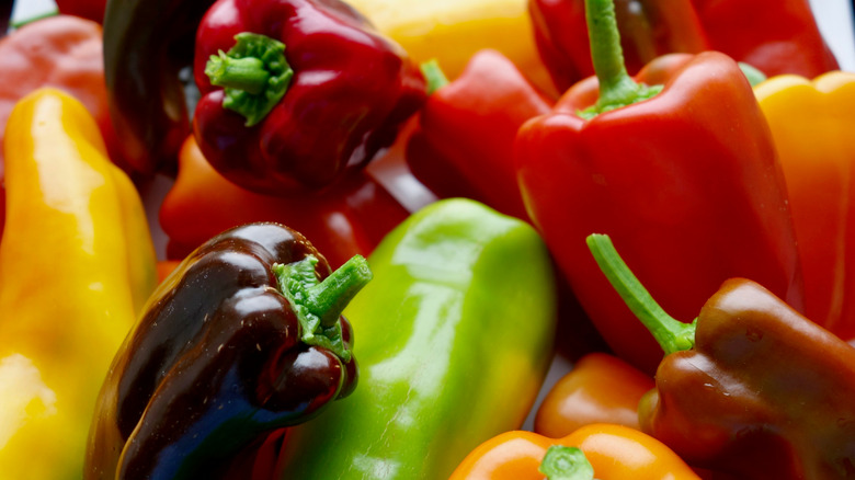 red, yellow, green, and purple bell peppers