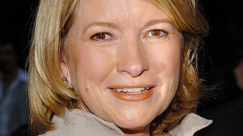 Martha Stewart close-up