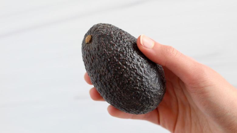 Holding a small avocado