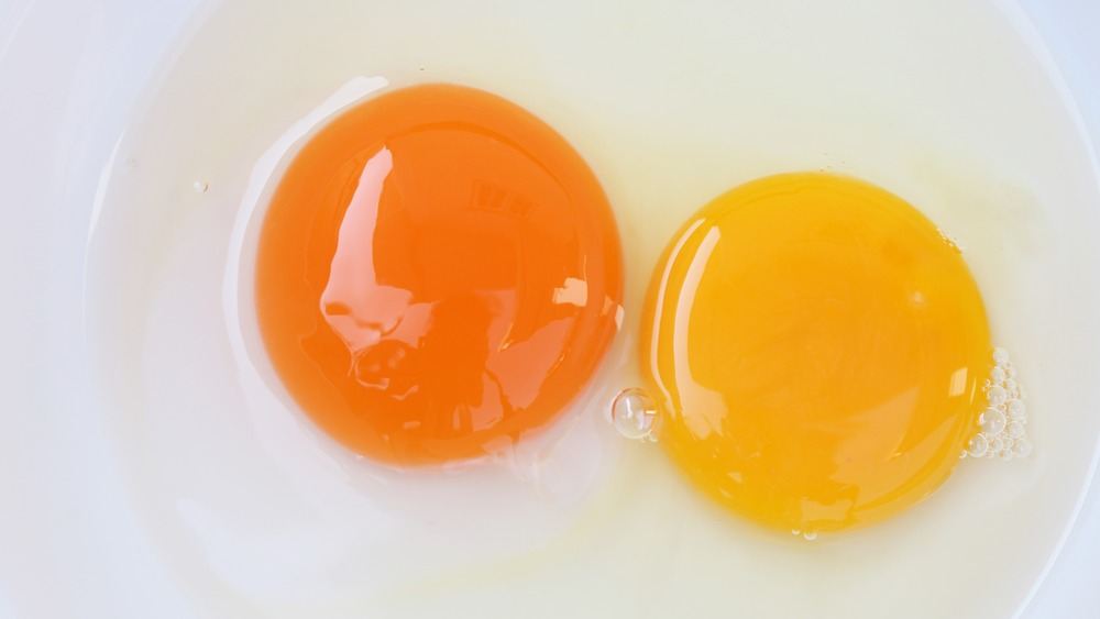 Duck and chicken yolks