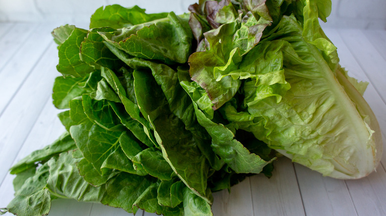 two heads of lettuce on a white wooden table