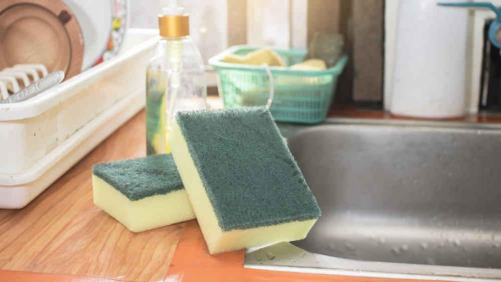 kitchen sponge by the sink
