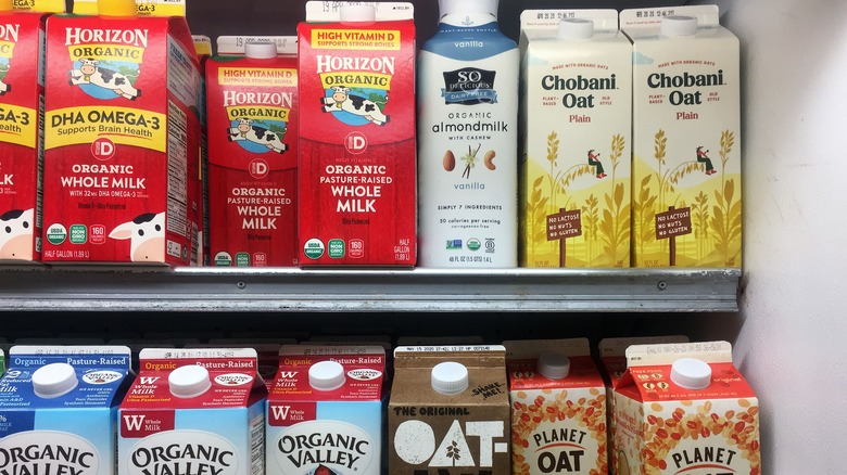 dairy and oat milk on shelves