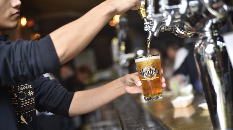 Person pouring a Modelo beer