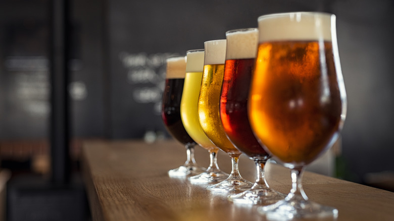glasses of different style beers