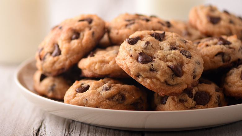 A plate of fresh chocolate chip cookies