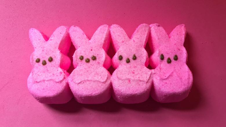 Four peeps bunnies