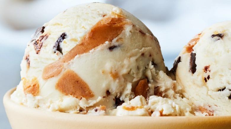 Haagen-Dazs Peanut Butter Chip Heaven Light Ice Cream in a Bowl