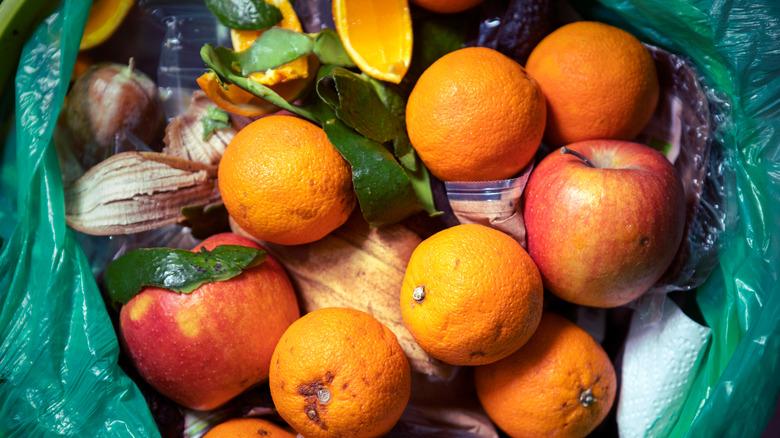 Fruit in garbage