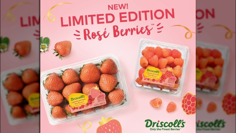 Driscoll's new berries in containers