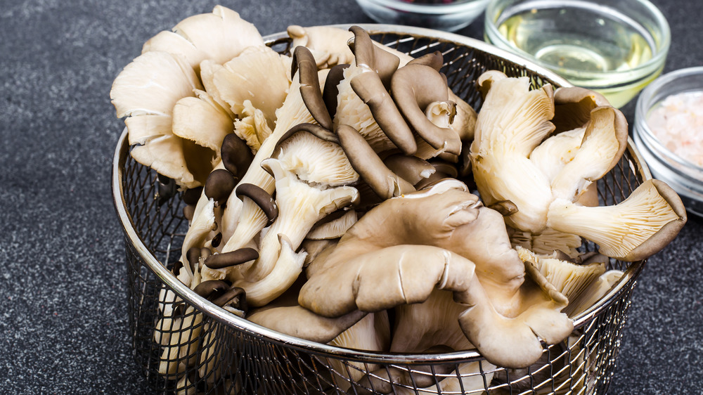 Oyster mushrooms in a basket