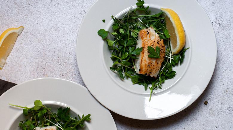 sea bass with microgreens and arugula on plate