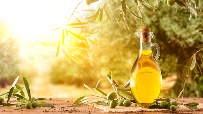 A jar of olive oil on a table in a grove