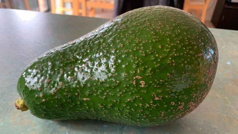 A giant avocado