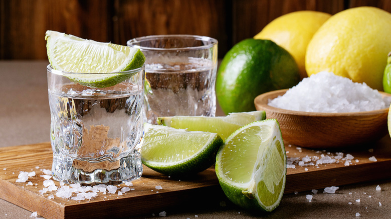 Tequila in rocks glasses with lemons, limes, and salt