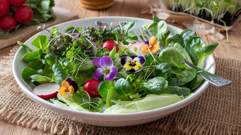 Salad of greens, flowers, and tomatoes