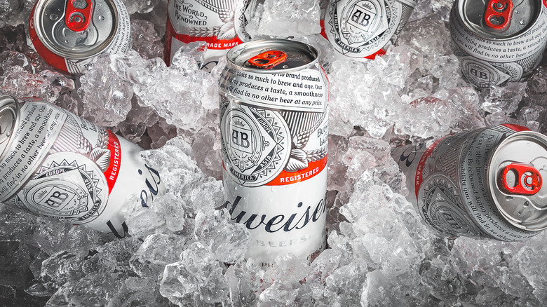 Budweiser cans from Anheuser-Busch on ice