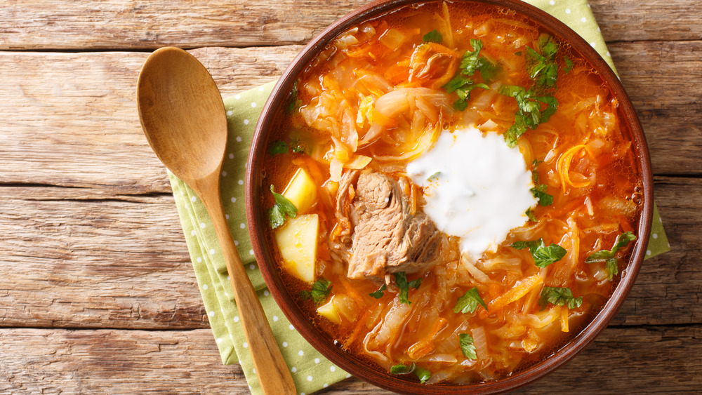 Traditional Russian cabbage soup in a bowl