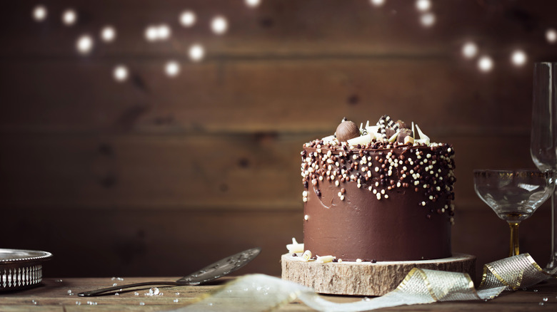 Chocolate party cake with sprinkles