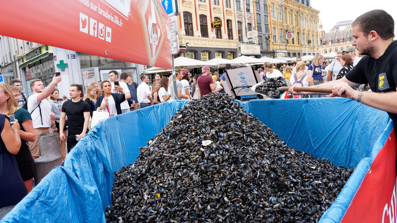 French Mussel Market
