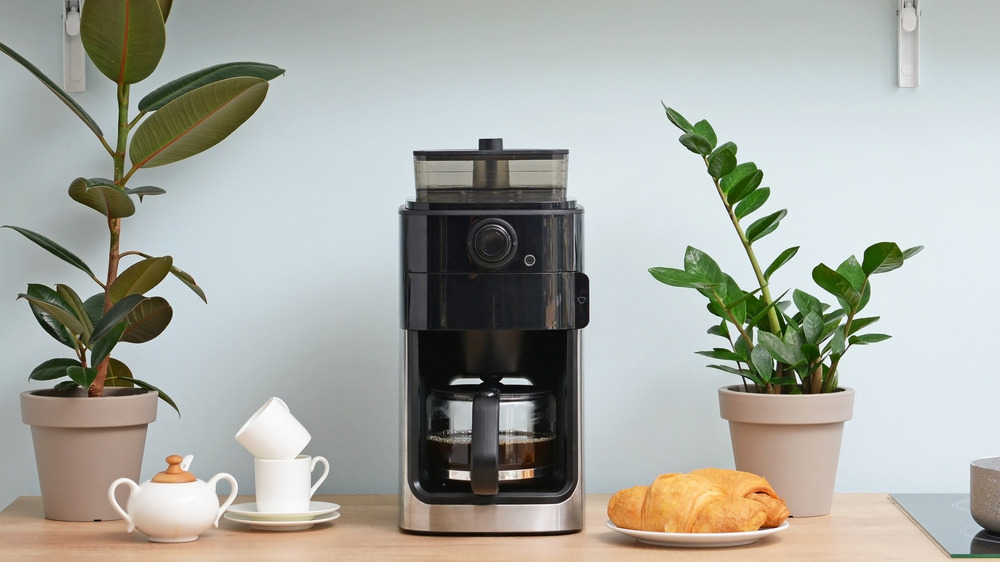 Drip coffee maker on counter