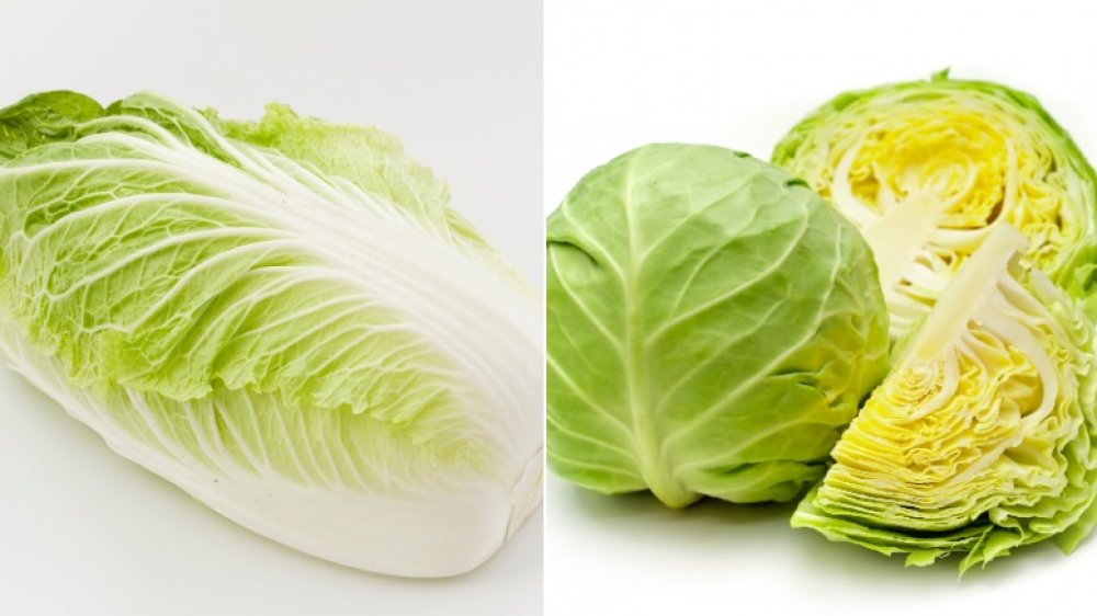 Napa and green cabbages