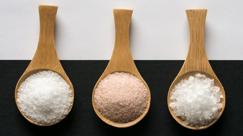Spoons with different types of salt