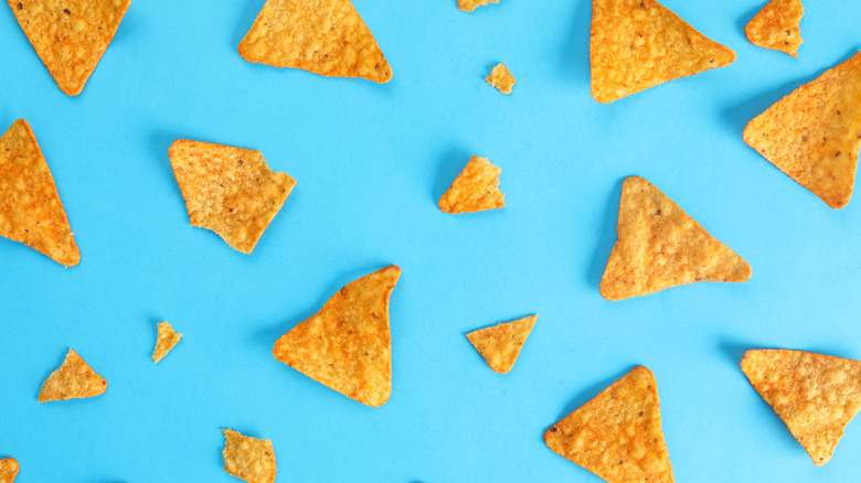 tortilla chips against a blue background