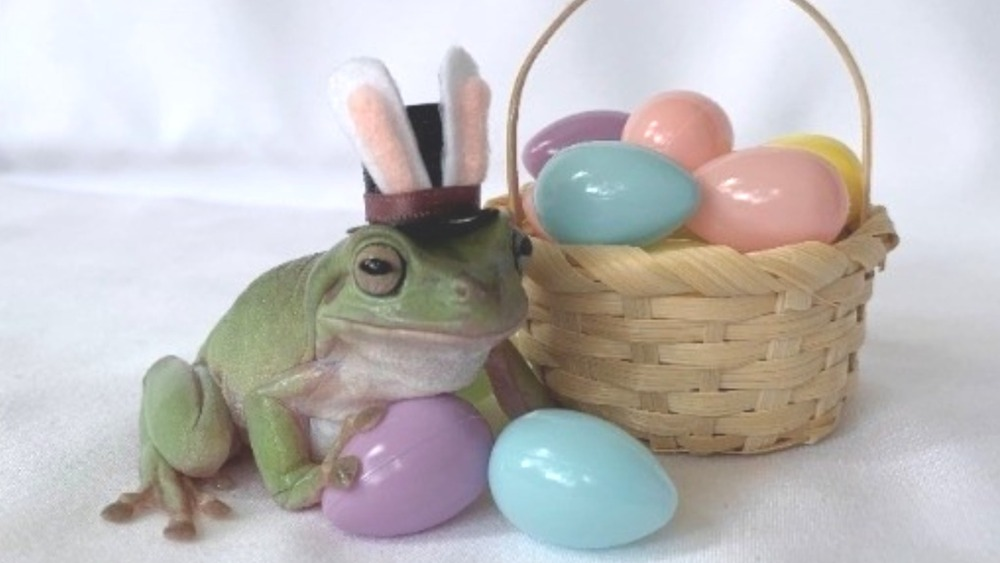 Betty the 2021 Cadbury Easter Bunny