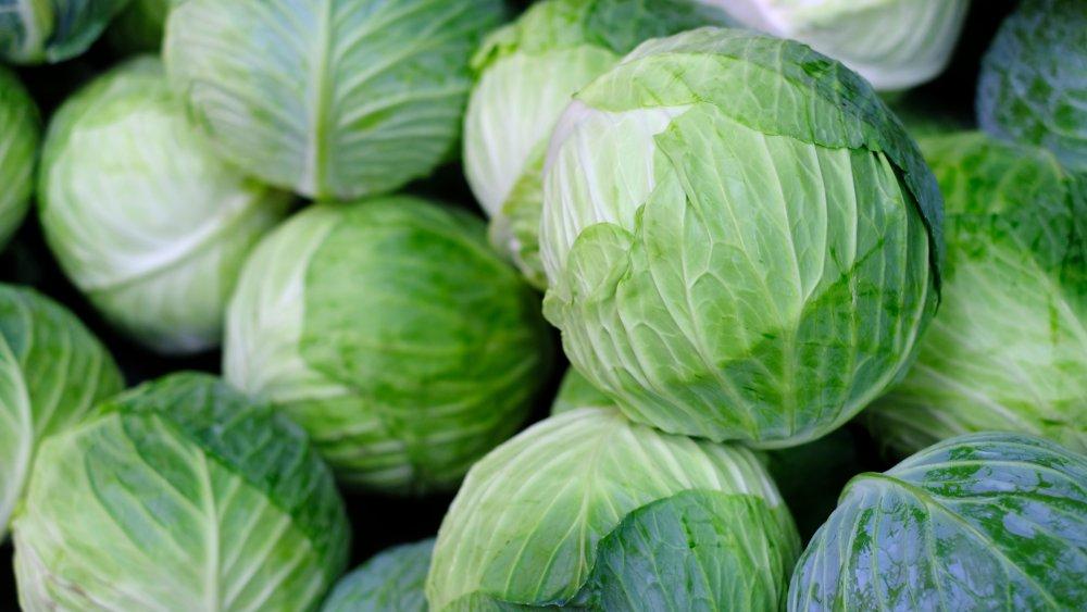 Three types of cabbage