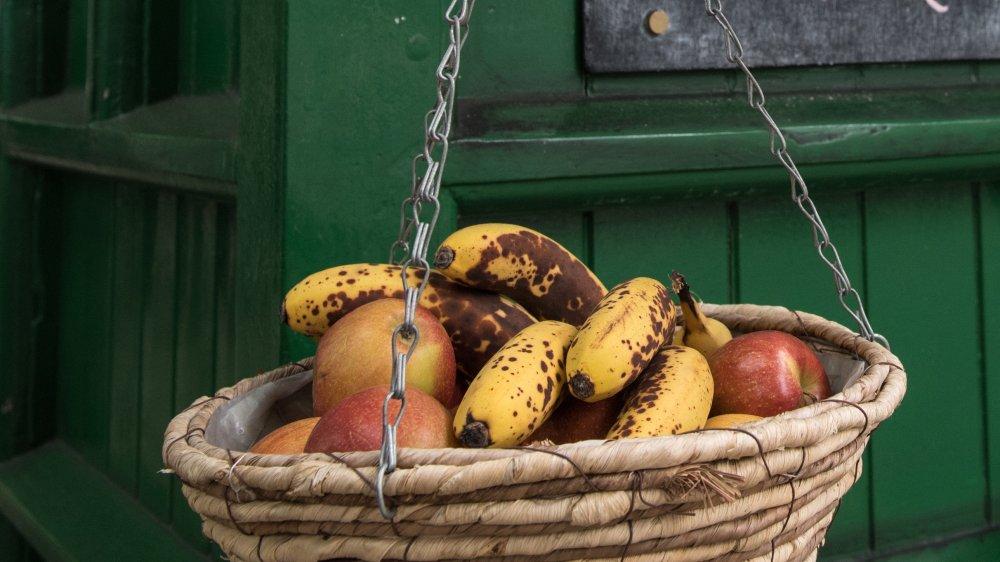 Basket of ripe fruit